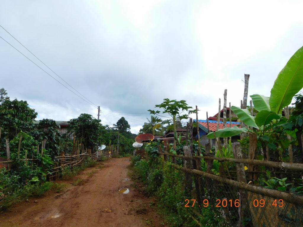 Start of the trek... the village where coffee is grown